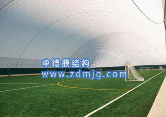 冰球馆气膜|气膜式建筑|找中德膜结构图片