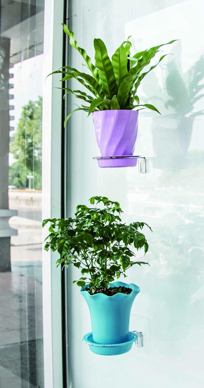 神奇立体盆栽挂件小花卉直接挂在光滑墙壁面室内花盆支柱圆形方形