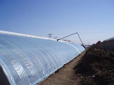 蔬菜大棚保温被价格_蔬菜室大棚保温被日光温室保温被智能大棚保