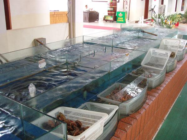 海鲜市场的玻璃鱼缸是怎么做的,海鲜鱼池制冷机,海鲜市场海鲜池图片