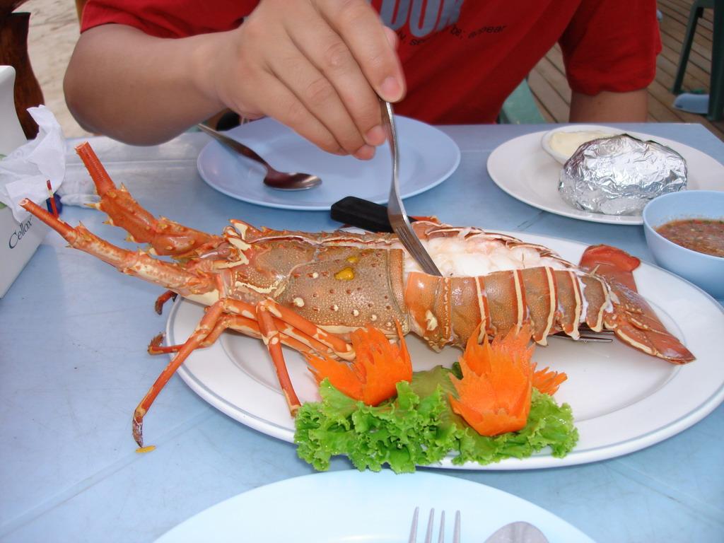 温州代理办理进口海鲜龙虾许可证