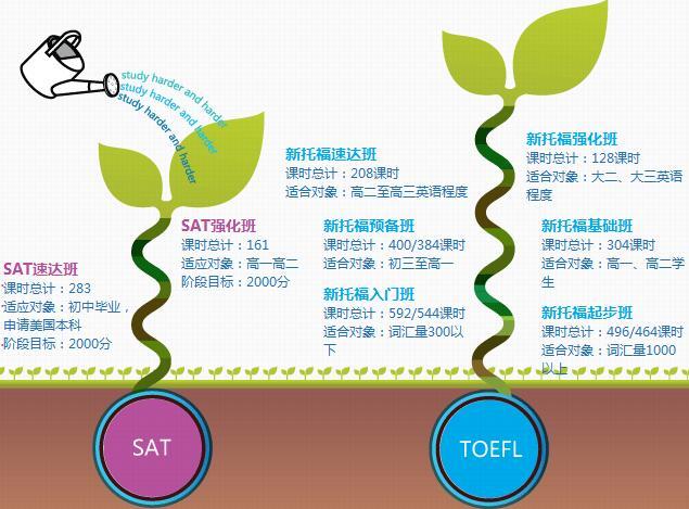 南京初中小托福考试培训学校,新托福v初中哪家的美丽蔷薇花初中图片