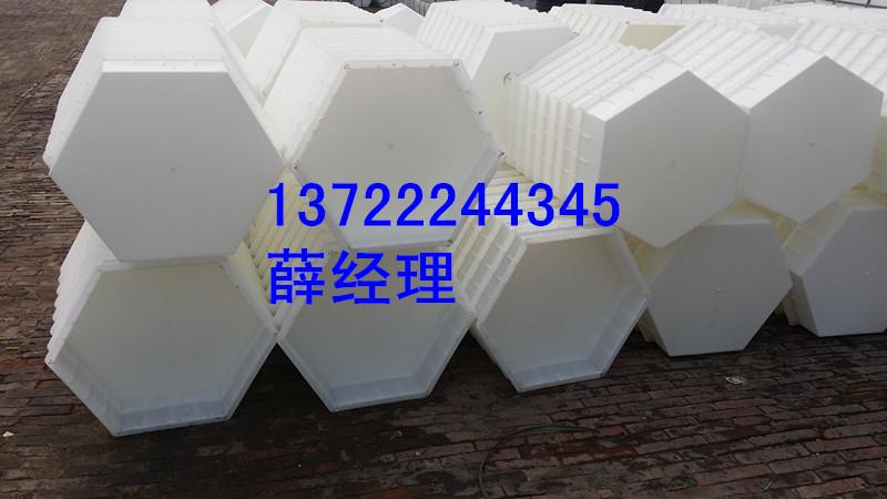 现状六棱块方面塑料模具产护坡建筑设计工程最新招聘图片