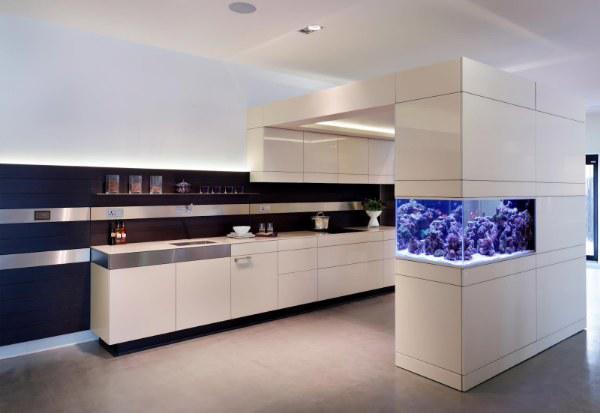 广州嵌墙式鱼缸定做,办公室隔断式鱼缸设计,定做嵌墙隔断式鱼缸