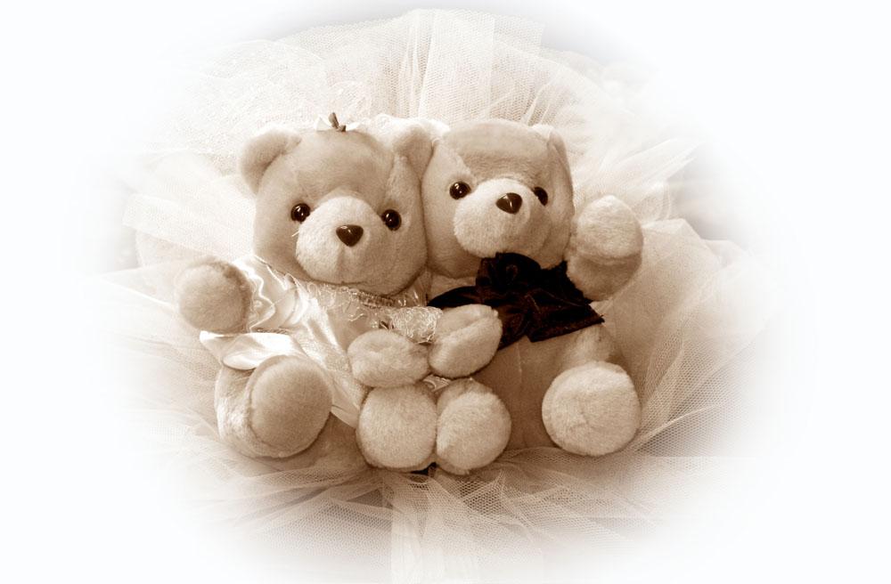 熊熊可爱图片大全