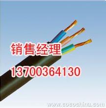 天津市電纜總廠第一分廠Logo