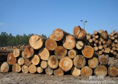 青岛哪家清关公司代理进口木材有经验