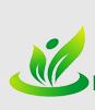 任丘市绿美亚人造草坪厂Logo
