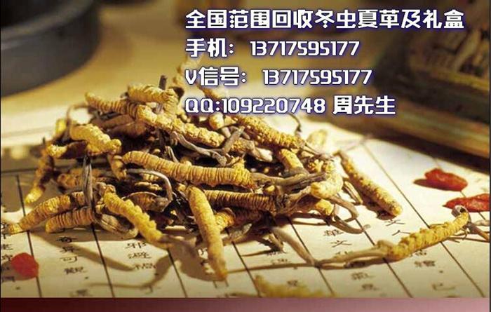 极草回收北京
