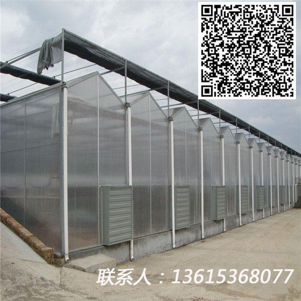 专业设计生产安装阳光板温室优质玻璃温室大