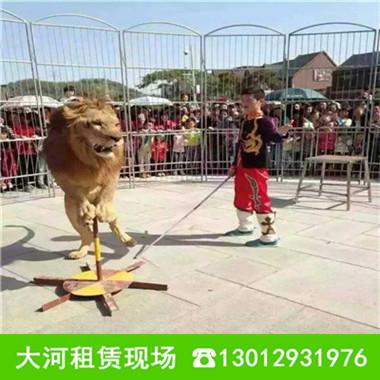 马戏团动物表演_大河特种珍禽养殖园