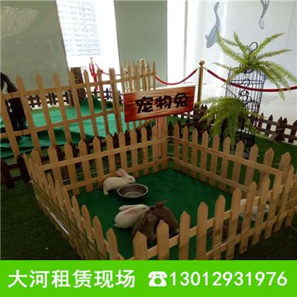 山东大河动物租赁公司坐落在山东省济宁市