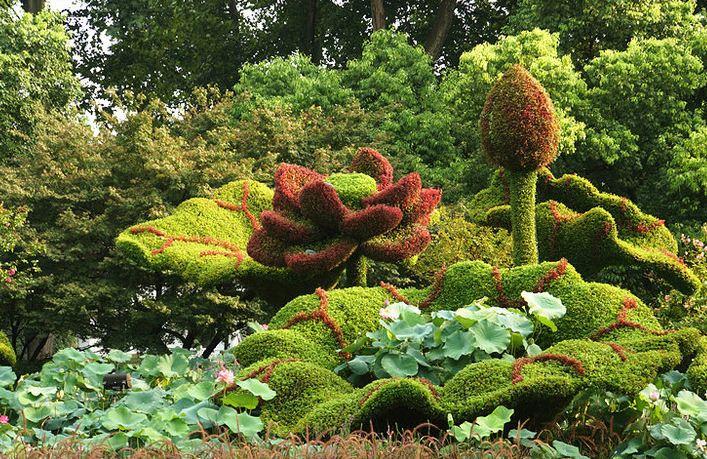 植物立体造型
