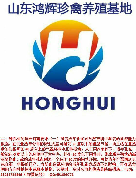 山东鸿辉珍禽养殖场Logo