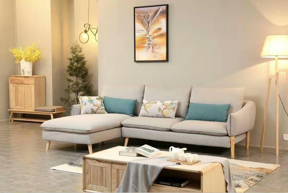 客厅北欧布艺沙发小户型图片