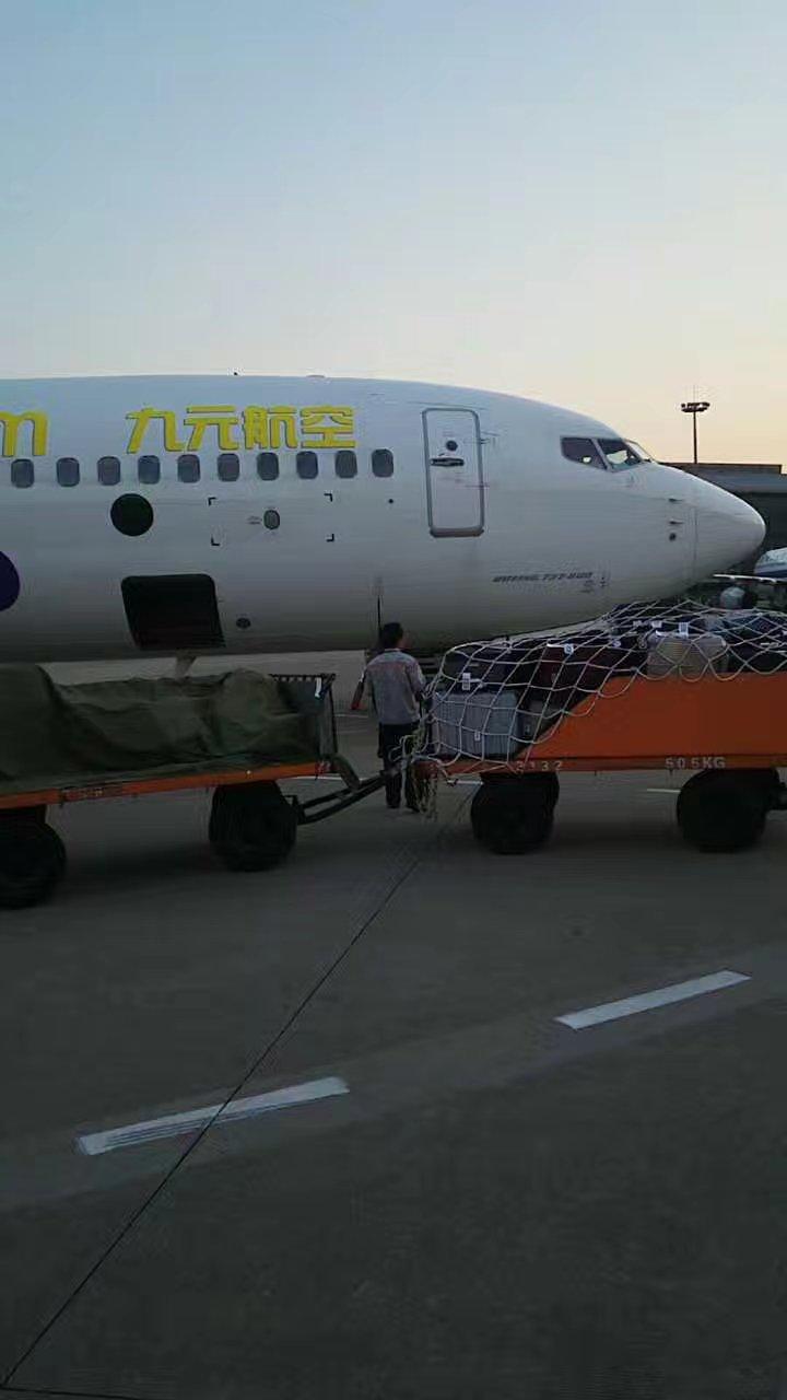洛阳到深圳飞机
