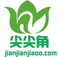 济南尖尖角信息科技有限公司Logo