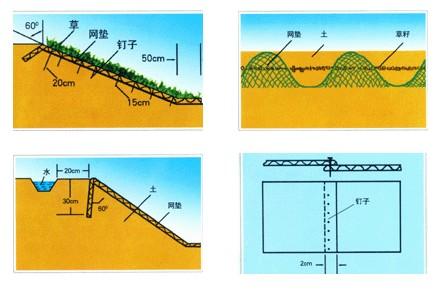 钢结构屋顶厂家直销通风降噪丝网田径运动场的排水而且还能降低植草
