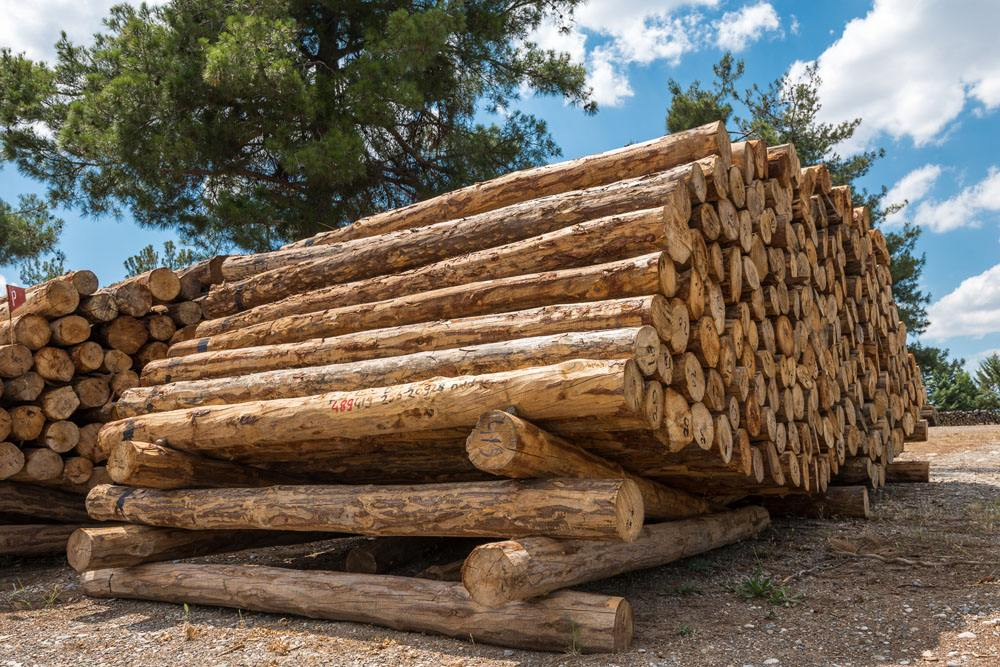 三种常见木材的防腐方式