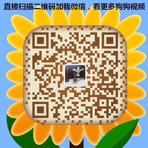 1556541817066360274273.jpg