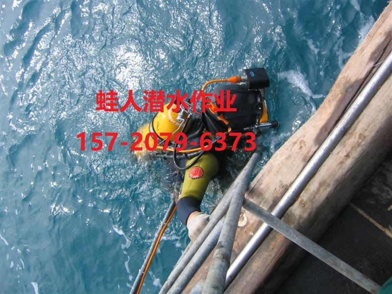 济宁市水下堵漏公司-水下检修项目