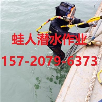 雅安市潜水打捞队-水下堵漏项目