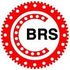 洛阳百润斯轴承有限公司Logo