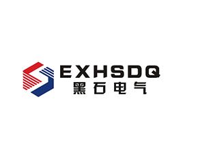 浙江黑石电气有限公司Logo