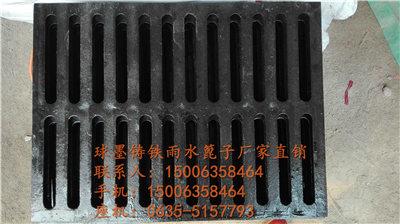1100347973643806815117.jpg