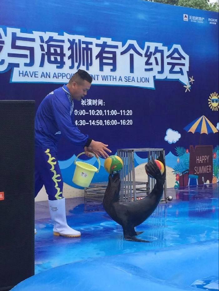 徐闻县大型马戏团表演出租活动现场视频
