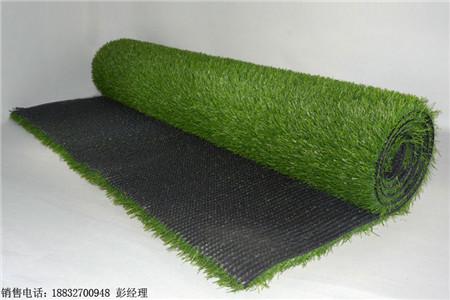 四川甘孜泸定人造草坪用什么胶_绿美亚公司