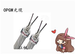 云南镇雄县LGJ钢芯铝绞线厂家电话*型号齐全