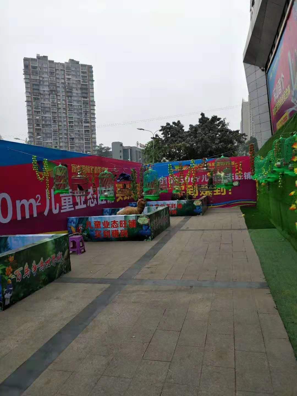 宜春马戏团表演出租图片