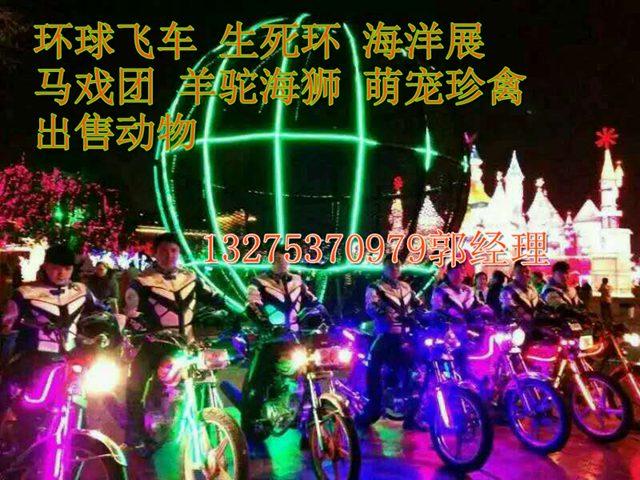 安庆马戏团表演哪里可以租到