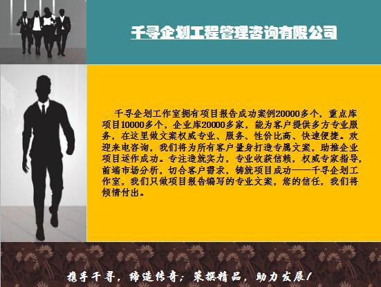 成县千寻咨询项目稳评报告编制团队