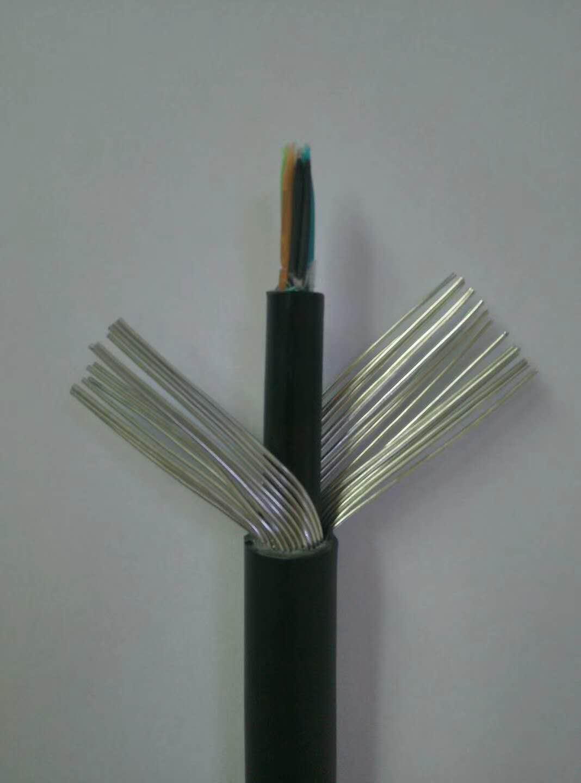 DDZ-KVVP2-低烟低卤阻燃控制电缆哪里销售