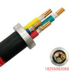 变频电缆ZRC-BPVVP2电缆
