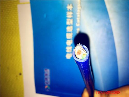 NX-HS-FF-(R)-B补偿导线电缆