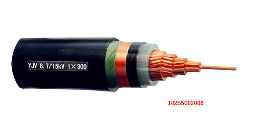 NH-BPGVFPP2、NH-BPGVFP3天康变频电缆