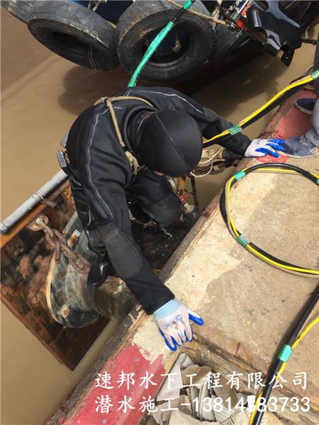 呼伦贝尔市-排污管道气囊堵水
