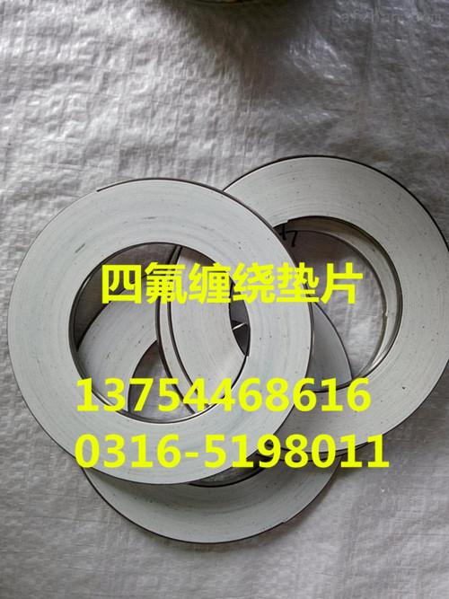 安徽芜湖不锈钢内外环缠绕垫