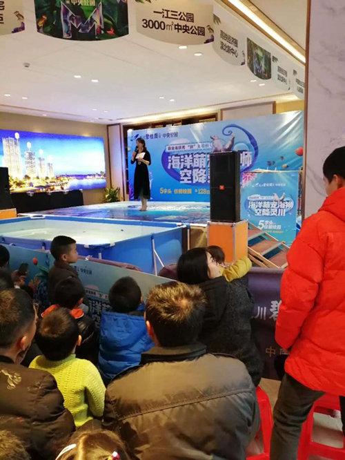如东县动物租赁展览海洋展海狮表演租赁