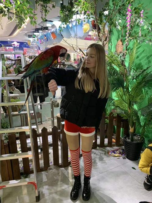双清区周边出租萌宠展览动物一手资源