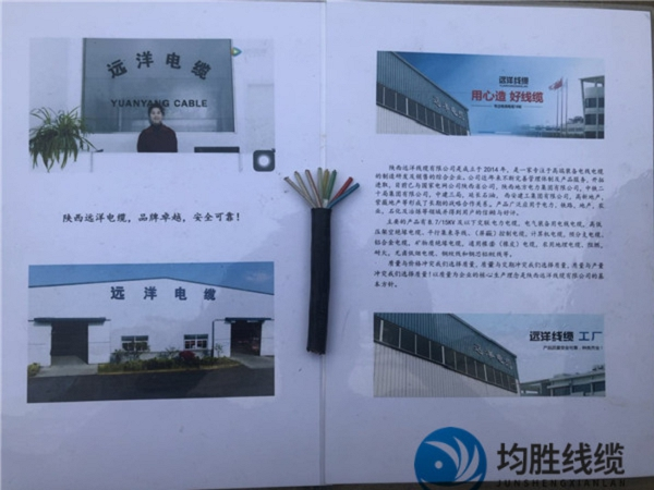 广州市五股控制电缆质量哪家好生产厂家