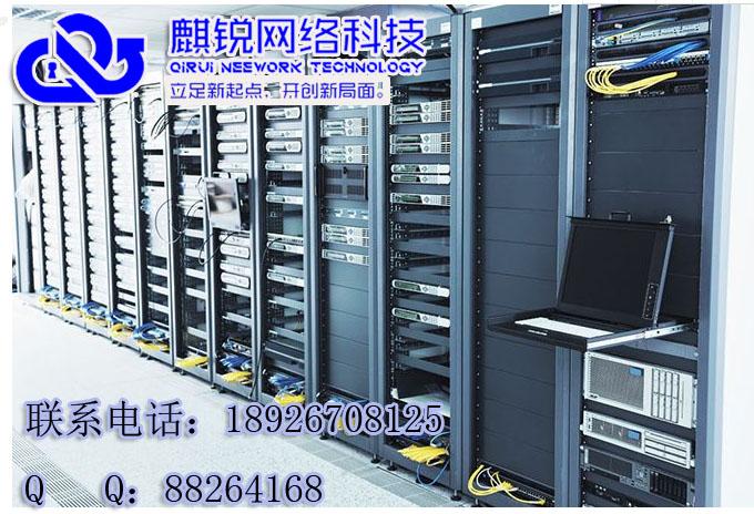 广东麒锐网络科技有限公司