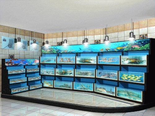 东莞海鲜鱼池定做,海鲜池制作工程厂商图片