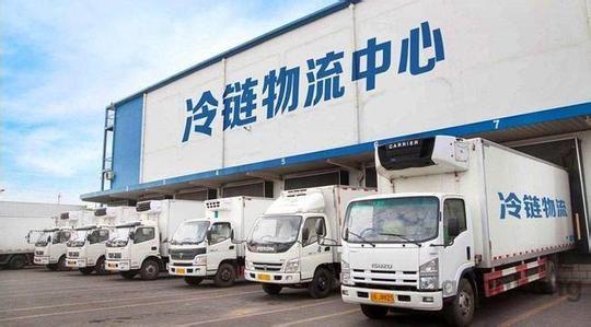 仓储上海到杭州市冷藏车物流公司冷链咨询