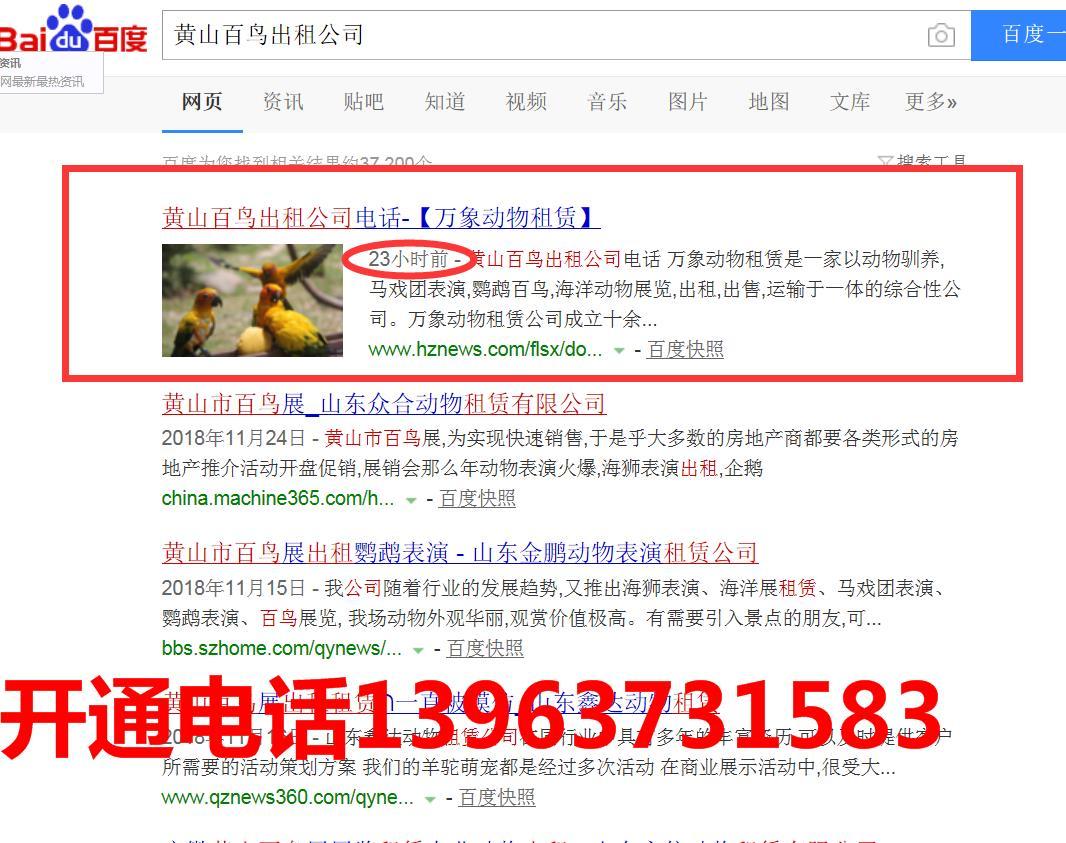 云商讯推广多少钱_山东鑫意动物租赁_商国互联网