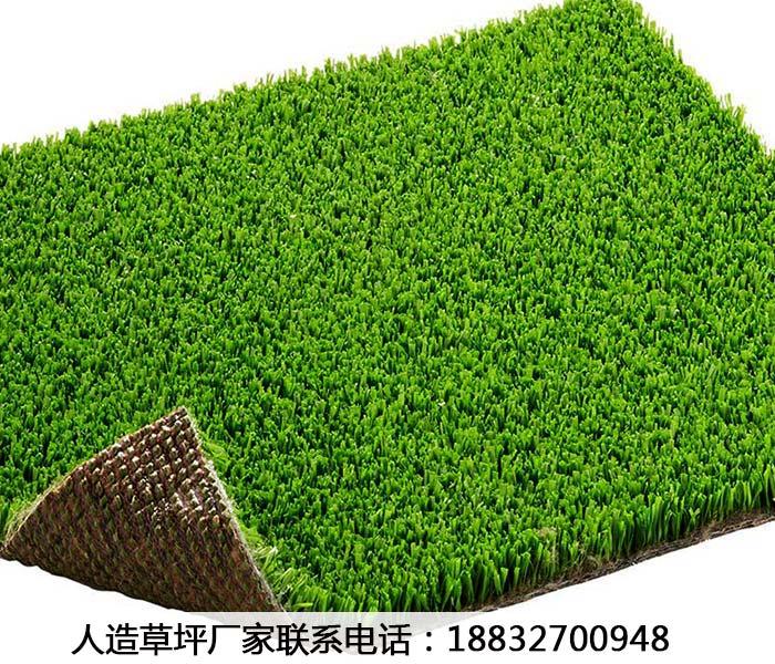 人造运动场草坪黑龙江大庆多少钱一平