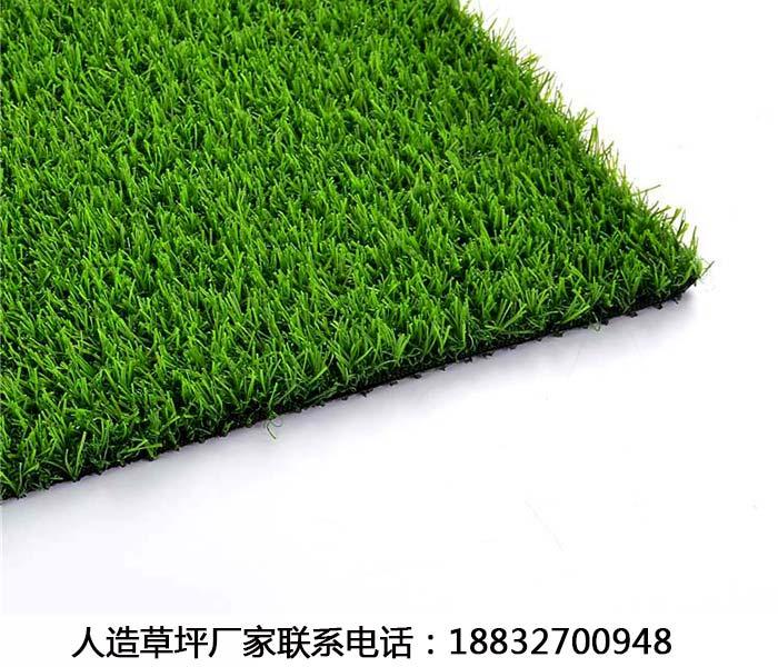 北仑人造足球场草坪品牌景县